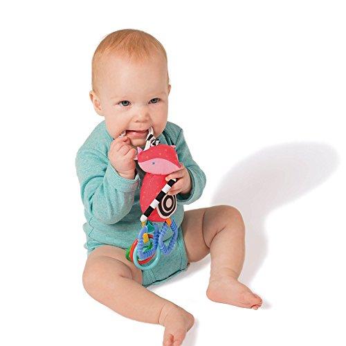 Manhattan Toy Fun Rattle Teether