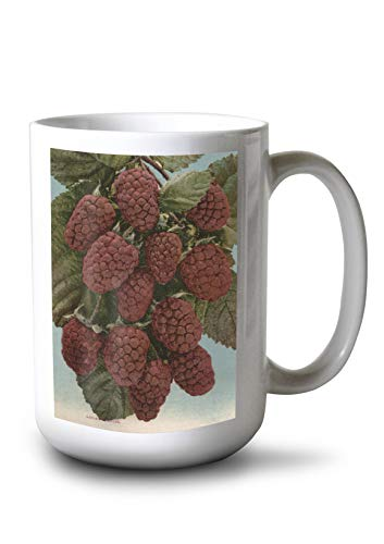 Fruit Chromo Lithograph of Loganberries (15oz White Ceramic Mug)