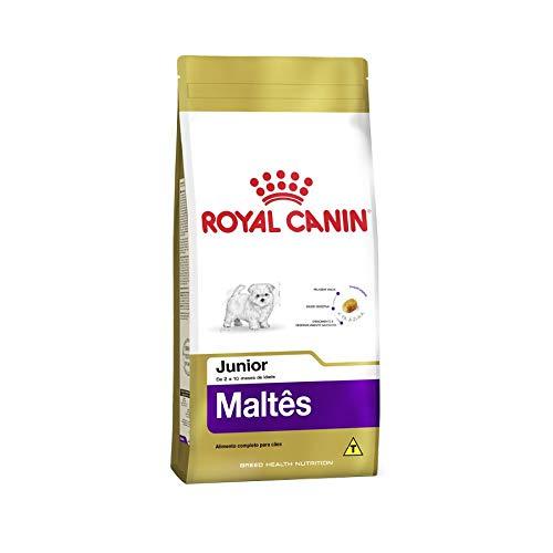 Ração Royal Canin Maltês Junior Cães Filhotes 2,5kg Royal Canin para Todas Todos os tamanhos de raça Filhotes - Sabor Outro