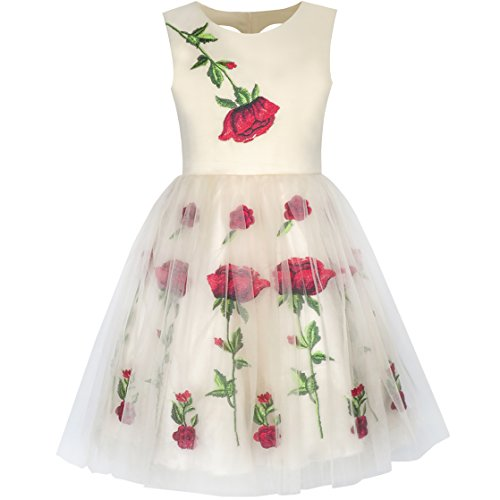 Sunny Fashion KY25 Girls Dress Champagne Rose Flower Embroidery Heart Shape Back Size 14 -