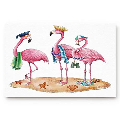 Welcome Doormat Funny Beach Pink Flamingos Home Decor Door Mats Indoor Kitchen Rugs Non Slip Bathroom Carpets Water Absorbent Bath Rug Cartoon Art 16x24Inch