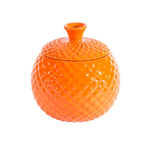 Fruit Fly Catcher Trap for Home Kitchens, Natural Pest Control, Chemical free, Nontoxic, Decorative, Effective, Kid and Pet Friendly (Orange) by Elevated Lifestyle