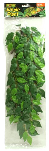 Bestselling Reptile Decor Plants