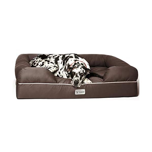 camas-para-cães-ortopédicas