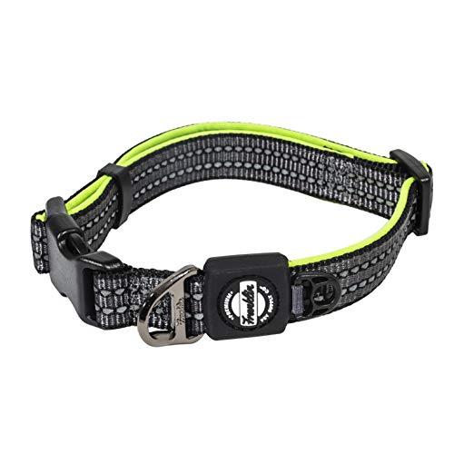 Franklin Pet Supply Nylon Dog Collar - Reflective Co - Comfort Fit - Neoprene - Adjustable - Small - Green