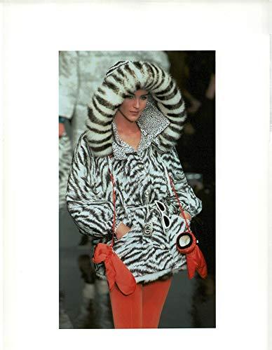 Christian Stripes Dior (Vintage photo of Fashion design,Black And White Zebra Stripes At The Christian Dior.)