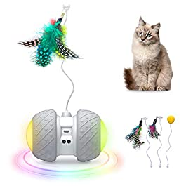 GKCI 2019 Upgrade Electronic Cat Toy, Automatic Interactive Cat Toy Light Catch with Feather 2 in 1 Rotating Teasing Pet for Activity