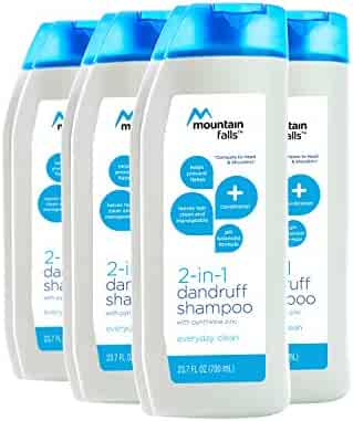 Mountain Falls 2-in-1 Dandruff Shampoo and Conditioner, Everyday Clean, Compare to Head & Shoulders, 23.7 Fluid Ounce (Pack of 4)
