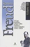 Edição Standard Brasileira das Obras Psicológicas Completas de Sigmund Freud Volume XII: O Caso Schreber, Artigos sobre Técnica e outros Trabalhos (1913-1914)