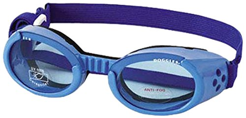 Doggles ILS Small Shiny Blue Frame Blue Lens Dog Goggles Dog Goggles by Doggles