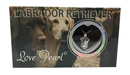 Love Pearl Creations Dogs Wish Kit with Pendant Necklace (Labrador Retriever)