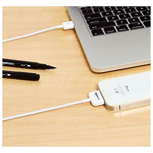 AmazonBasics Apple Certified 30-Pin to USB Cable for Apple iPhone 4, iPod, iPad 3rd Generation, 97,2 cm