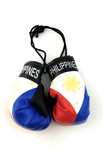 Red Hat Ent Hanging Car Mirror Mini Boxing Gloves (Philippines)