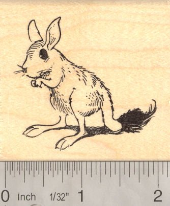 Springhare Rubber Stamp, South African Springhaas,