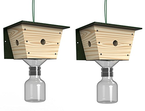 Best Bee Brothers Carpenter Bee Trap - 2 pack by Best Bee Brothers