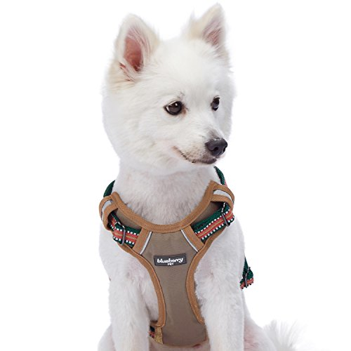 """Blueberry Pet 9 Colors Soft & Comfy 3M Reflective Multi-Colored Stripe Padded Dog Harness Vest, Chest Girth 22""""-26.5"""", Neck 17.5""""-26"""", Dark Green & Pink, Medium, Mesh Harnesses for Dogs"""