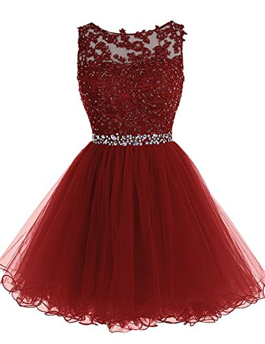 Short Homecoming Dresses Lace Open Back Cocktail Party Dress Tulle Prom Dress Appliques Burgundy (Best Quinceanera Dresses In The World)