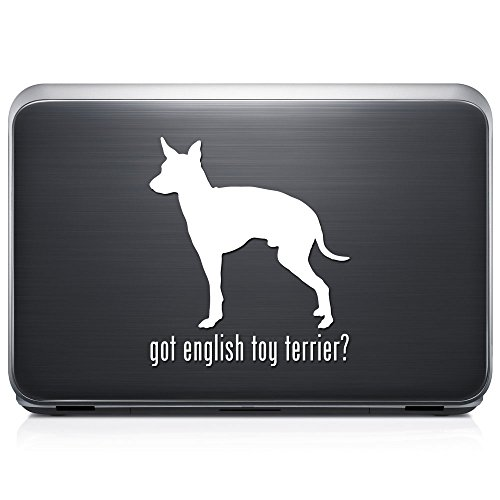 Got English Toy Terrier Dog Pet PERMANENT Vinyl Decal Sticker For Laptop Tablet Helmet Windows Wall Decor Car Truck Motorcycle - Size (20 Inch / 50 Cm Tall) - Color (Got English Toy)