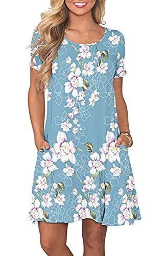 Womens Summer Floral Printed T Shirt Dress Casual Short Sleeve Swing Tunic Dress with Pockets, Lily Blue, Large ()