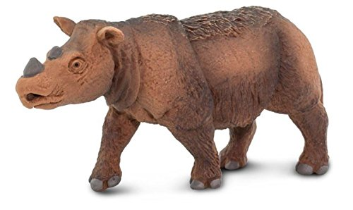rhino model - 3