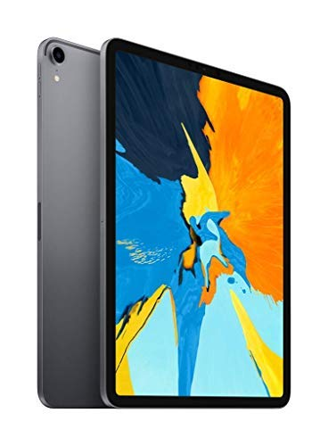 Apple iPad Pro (11-inch, Wi-Fi, 256GB) - Space Gray (Latest Model) (Renewed)