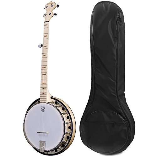 Deering Goodtime 2 Banjo with Gig Bag by Gator