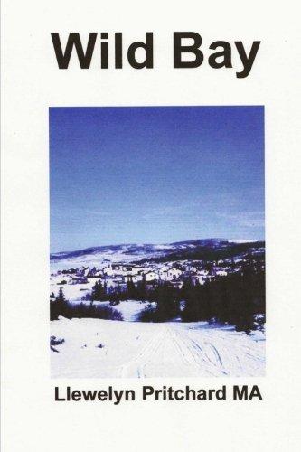 Read Online Wild Bay (Port Hope Simpson Mysteries) (Volume 6) (Korean Edition) ebook