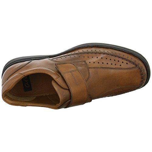 ara Shoes Armin Slipper Braun