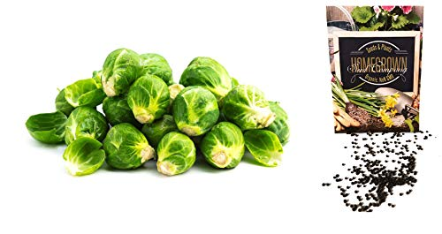 (Homegrown Brussel Sprouts Seeds, 350 Seeds, Organic Long Island Improved)