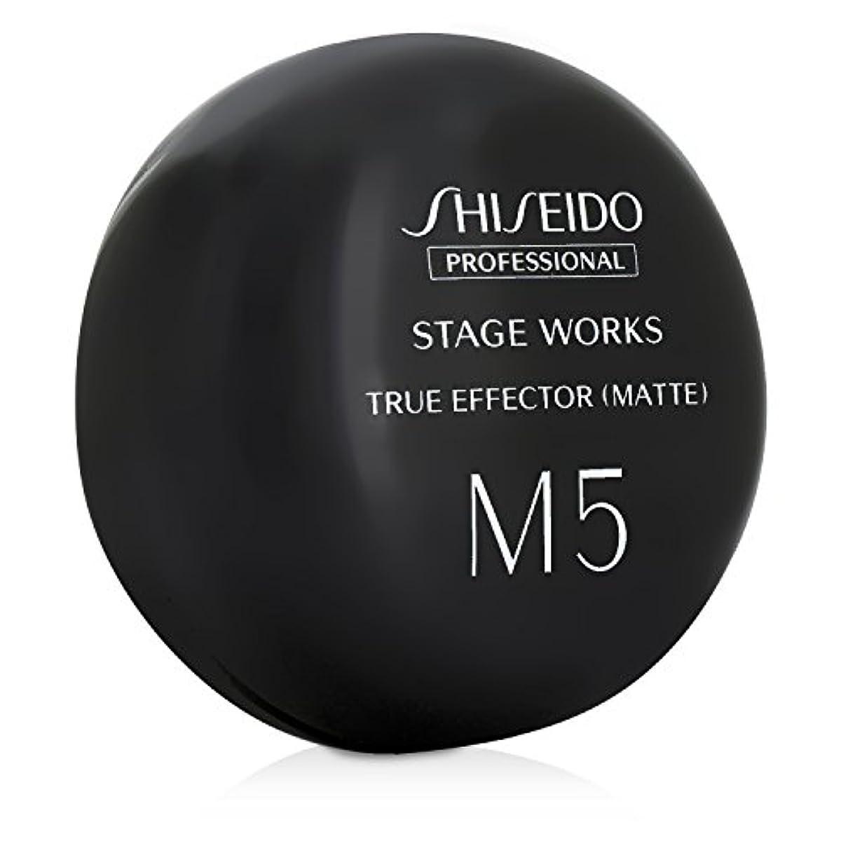 [해외] 시세이도 스테이지웍스 트루 이펙터 매트 M5 (80g)