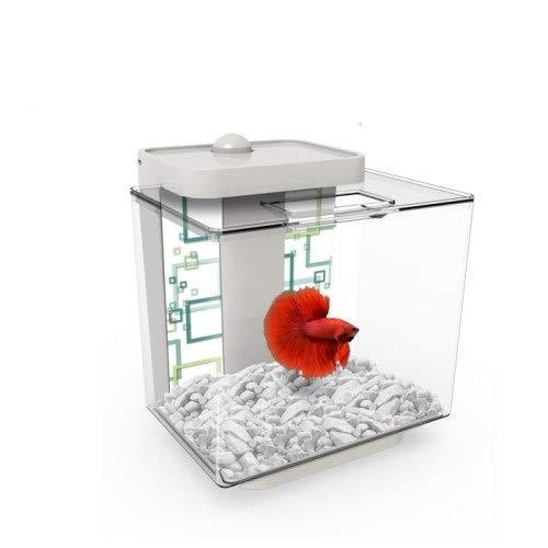 Marina Betta Aquarium White EZ Care Plus kit, 1.35 Gallon