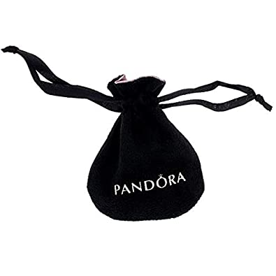 95f91cf4d417 Pandora Pouch Bag for Charms