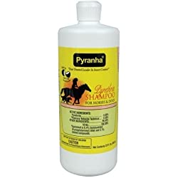 Pyranha 32 Fl Oz Pyrethrin Shampoo for Horses and Dogs Fly Control and Cleaning Power