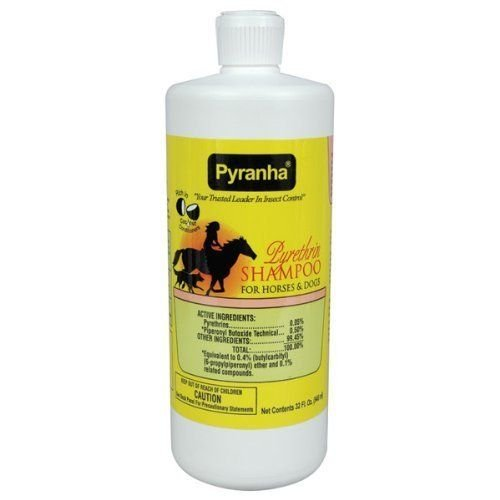 Pyranha 32 Fl Oz Pyrethrin Shampoo for Horses and Dogs Fly Control and Cleaning Power ()