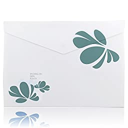 Shuter Document Folder with Snap Button, Letter / A4 Size, 4 Assorted Colors: Blue, Green, Gray, Red (F02-24)