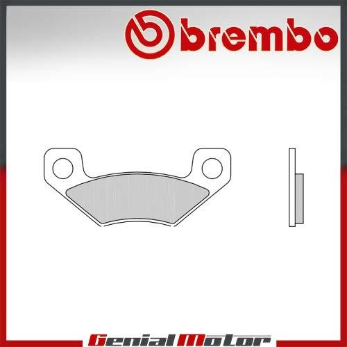 07GR25.SX Pastillas Brembo Freno Posterior SX para DS 450 2008  2012