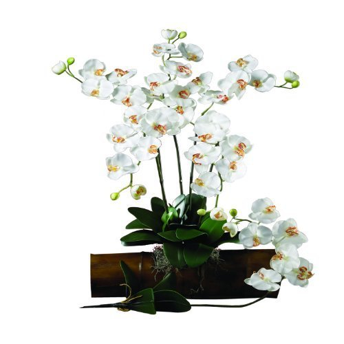 Nearly Natural 2044-CR-12 Phalaenopsis Stem (Set of 12) Cream by Nearly Natural by Nearly Natural
