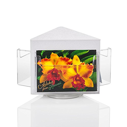 Source One Deluxe Rotating Revolving Counter Top Postcard Display Fixture Holder (1 Pack, 3 Pocket) by SOURCEONE.ORG