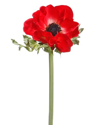 Amazon 17 silk anemone flower spray red pack of 12 home 17quot silk anemone flower spray red pack mightylinksfo