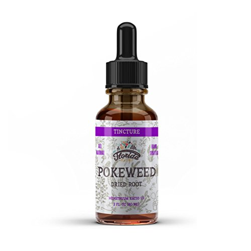 Poke Root Herb - Pokeweed Tincture, Organic Poke Extract (Phytolacca Americana) Dried Root, Non-GMO in Cold-Pressed Organic Vegetable Glycerin, Florida Herbs Supplements