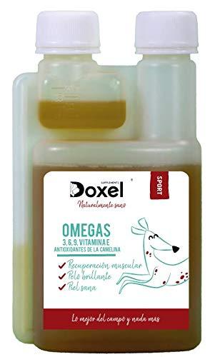 Doxel Sport -100ml Aceite para Perros | Suplementos Naturales nutricionales | Antioxidantes| Recuperación Muscular| Articulaciones sanas |Sistema ...