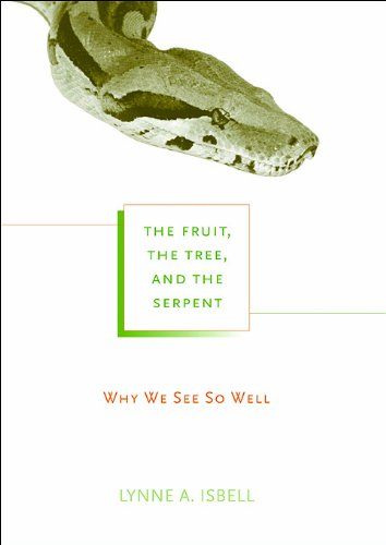 the-fruit-the-tree-and-the-serpent-why-we-see-so-well