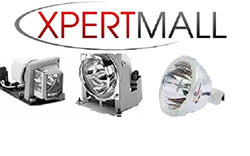 APOG SANYO 610 328 6549 Projector Replacement Lamp with Housing by XpertMall 6549 Projector Lamp