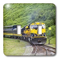 (3dRose lsp_45613_2 Railroad Train Runs Through Beautiful Scenery Between Anchorage and Seward Alaska Toggle Switch)