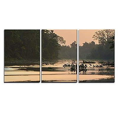 Top Quality Design, Majestic Creative Design, Trees and Jungle on The Catatumbo River Near The Maracaibo Lake x3 Panels