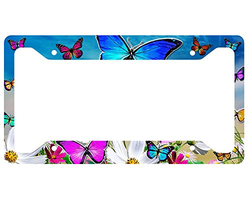 Butterfly License Plate Frames - Color