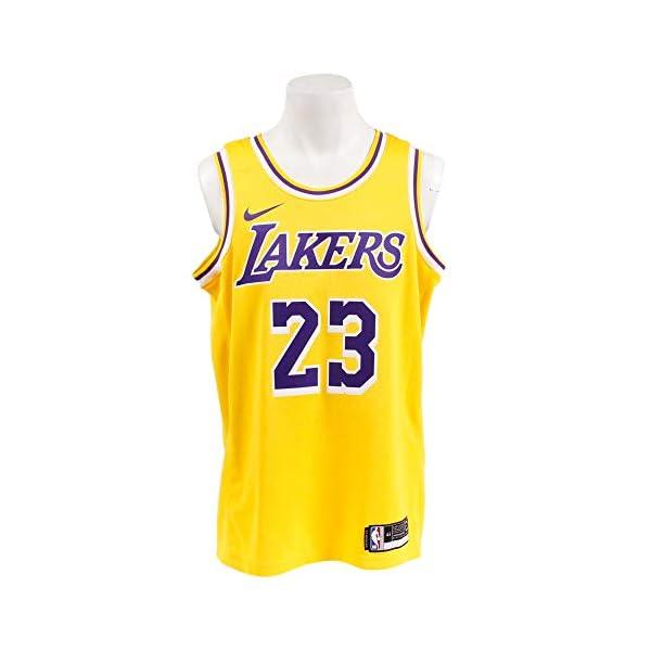 4c4b6effb Nike Mens Los Angeles Lakers Lebron James 2018-19 NBA Swingman Gold ...