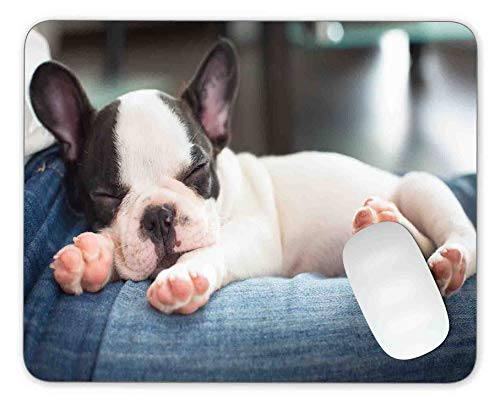 French Bulldog Mouse Pad - Timing&weng French Bulldog Puppy Sleeping on Knees Mouse pad Gaming Mouse pad Mousepad Nonslip Rubber Backing