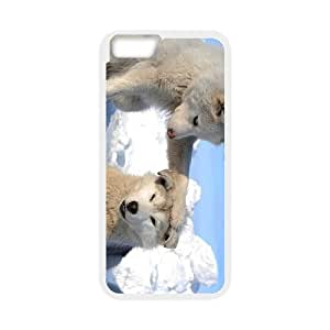 Generic Case Huskies For iPhone 6 4.7 Inch A2WQ343323