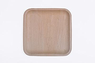 "10"" Flat Square Palm Leaf Plate"